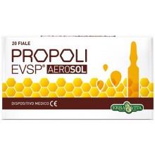 PROPOLI EVSP AEROSOL 20...