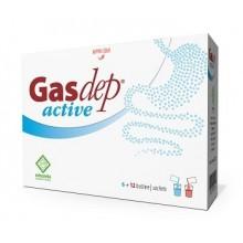GASDEP ACTIVE 6 + 12 BOLSAS